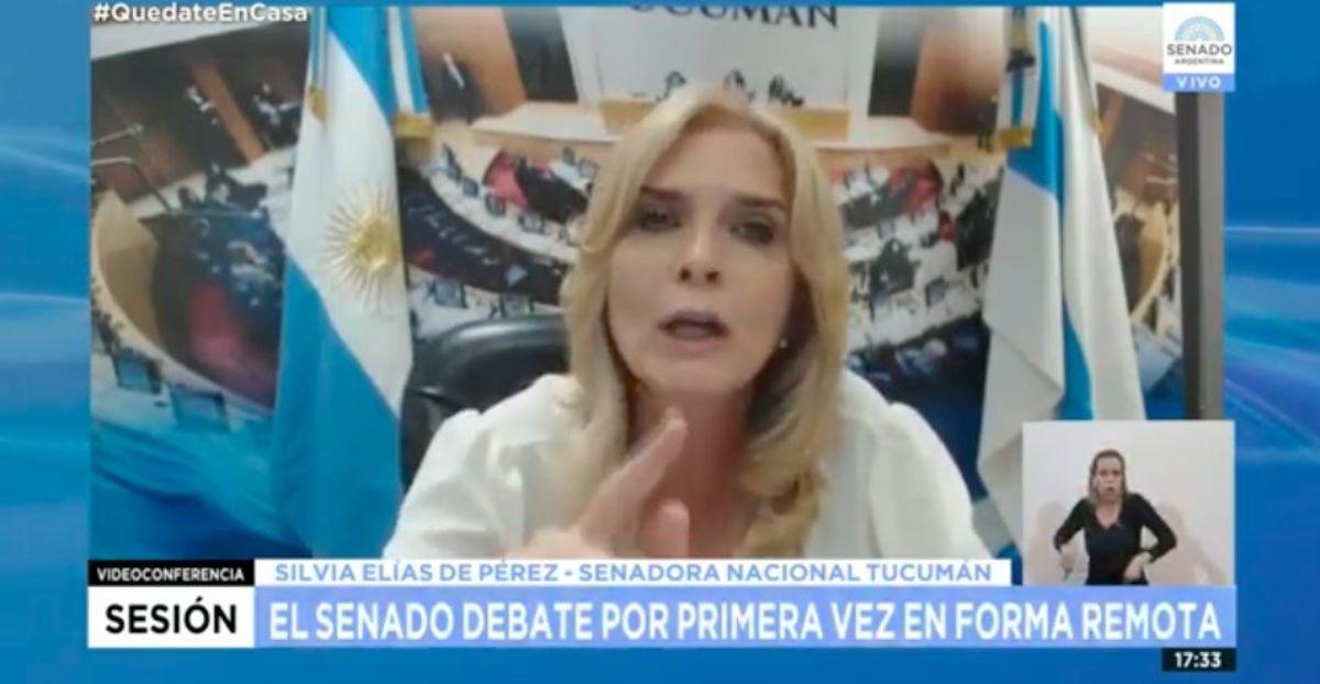 Silvia Elías de Pérez en el Senado Virtual