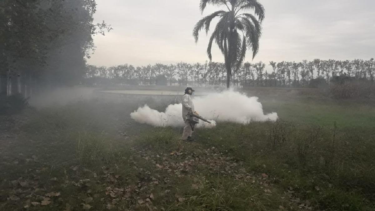 Fumigación contra el dengue.