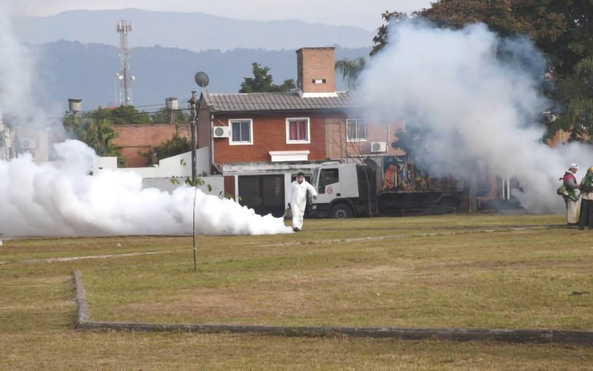 Canelada en la lucha contra el dengue.