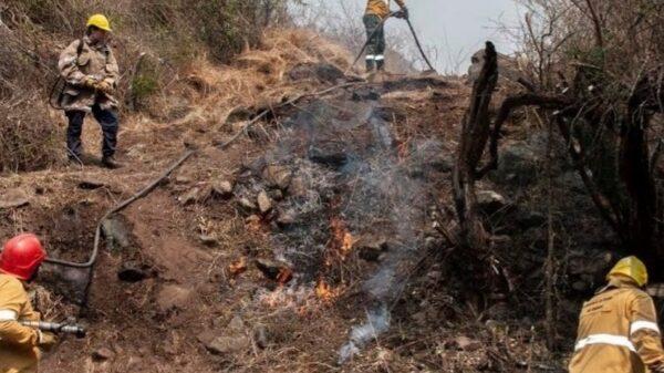 Incendio en Ruta 4
